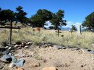 Poncha Springs, CO cemetery
